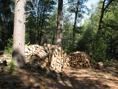 The hardwood pile