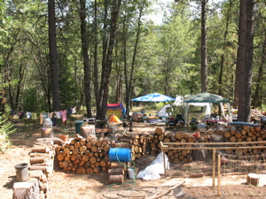 camp_garden.jpg